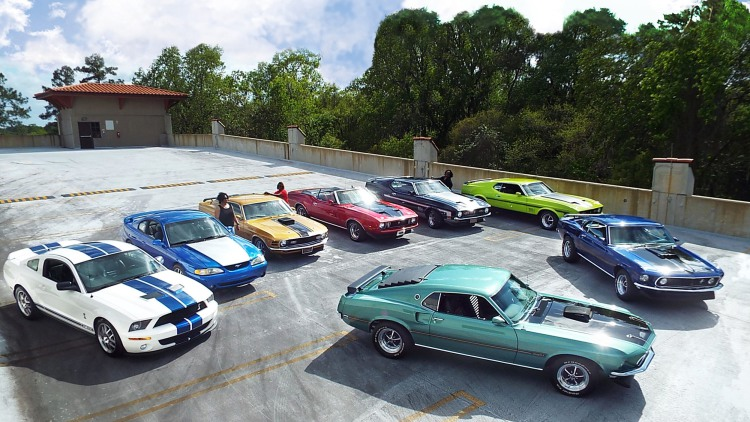 One family named Speed, one passion, eight Mustangs