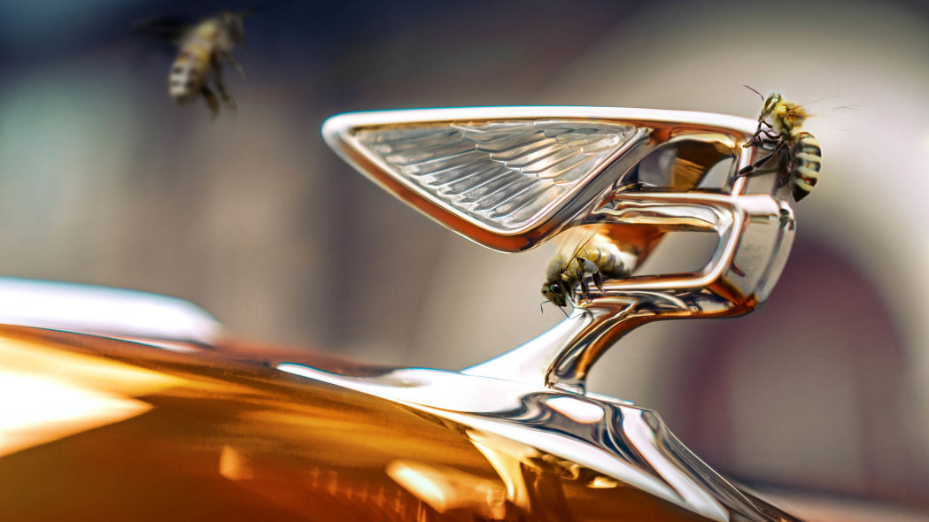 Bentley creates buzz with 'flying bees,' enters honey business
