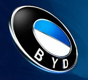 Slowing sales hit BYD, other Chinese automakers' earnings