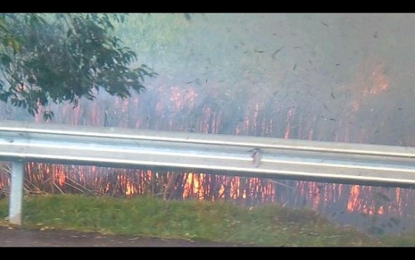 Intense Fire In Cane Field In North: Route 22 Closed For Traffic