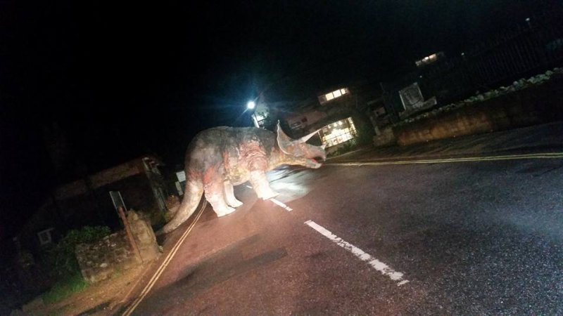 Huge Triceratops Left in the Middle of British Roadway