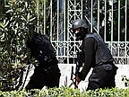 Gunmen Attack Tunisia Museum, Killing 8 and Taking Hostages