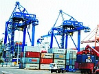 Exports Rose Despite the Crisis