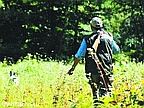 Night Hunting Could be Banned