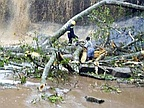 'At least 20 dead' after large tree crashes down at Kintampo Waterfalls in Ghana