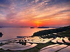 Picture of the Day: Rice Terrace Sunset