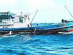 Thai Vessel Seized For Illegal Fishing In Nazareth