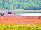Worrying Situation in Our Reservoirs