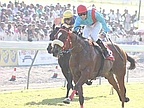 "Horse Racing - 10th day: Eskimo Roll Crowned ""King of kilometers"""