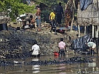 India on Alert After Sunderbans Oil Spill in Bangladesh