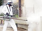 Two New Cases of Dengue in Triolet