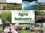 Agribusiness: Further Reforms