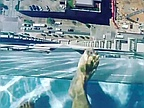 Sky pool in Houston, US, lets you fly and swim at the same time