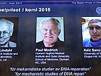 Nobel Prize for Chemistry: Lindahl, Modrich and Sancar Win for DNA Research