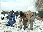 Snow Surprises South Africans as Cold Snap Strikes