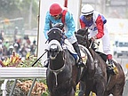 Horse Racing, 21th Day: Vettel Attack Mauritius Derby